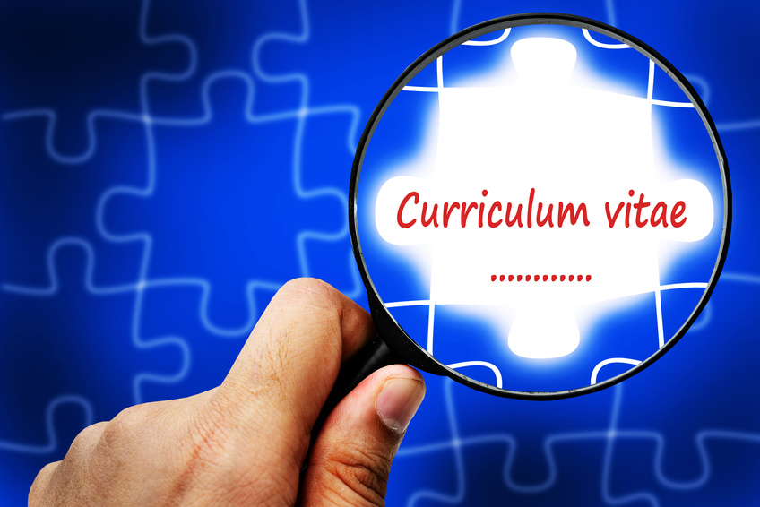 Curriculum vitae word. Magnifier and puzzles.