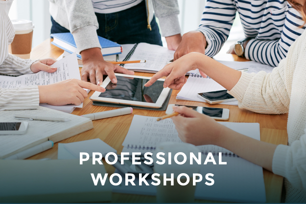 https://www.international-careers.com/en/professional-workshops/